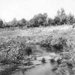 С. Мосолово. Речка Непложа. На высоком берегу огород деда Якова